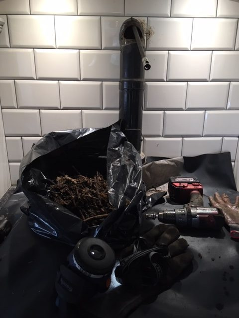 A bird's nest removed from an AGA
